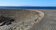 Ayrshire, Scotland. Causeway, Irvine Beach. (Phineas Redux) Tags: ayrshirescotland irvinebeachayrshirescotland firthofclydescotland ayrshire scotland