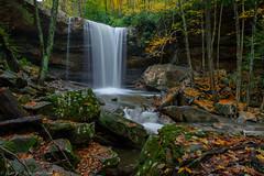 Cucumber Falls, Ohiopyle State Park (clare j kaczmarek) Tags: patnc cucumberfalls ohiopylestatepark laurelhighlands waterfalls mountainstreams autumn moss