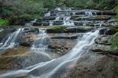 Leura Cascades (affectatio) Tags: leuracascades leura cascades waterfall waterfalls falls bluemountains newsouthwales nsw sony a77mk2 a77ii zeiss 2470mm