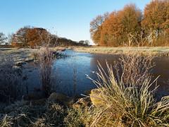 Gisterochtend,  heerlijk fris.........  Explore!! (Geziena) Tags: landschap landscape water natuur nature herfsttinten