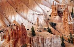 Horseback riding.. Bryces Canyon Utah. (Bernard Spragg) Tags: brycescanyon nationalparks lumixfz1000 scenery landscapes usa america bridgecameras horseriding canyons wow