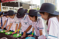 Is this a new water storage solution? (Brisbane City Council) Tags: children experiment greenheart greenheartschools kgs kids kinggeorgesquare people schoolagechildren schoolchildren schooluniform stalls worldsciencefestival