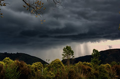 By Thunder, She's about to Blow! (Kevin_Jeffries) Tags: hailstorm thunder nature storm stormy dark darkcloud nikon flickr new nikkor weather natura plants trees hill november roadtrip stormchaser darkness rain light jeffries