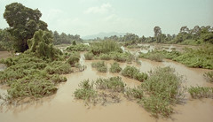 Laos : Si Phan Don #1 (foto_morgana) Tags: analogphotography analogefotografie archipelago asia indochina landscape laos mekongriver nikoncoolscan outdoor panoramic photographieanalogue river scenic siphandon travelexperience vuescan water