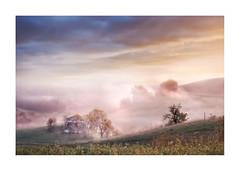 _MG_8627 (Alematrix) Tags: marche paesaggi fog alessandro scendoni sunrise explore landscape