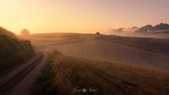 Lost Road (Javy Nájera) Tags: berceo espaã±a estollo larioja amanecer calor campo cereal naturaleza neblina paisaje sol dawn field fog heat landscape nature sun españa