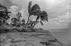 1991 CYCLONE (shahidul001) Tags: disaster naturaldisaster devastation wind winds destroy calamity catastrophe storm cyclone tropicalcyclone 1991 1991cyclone 29thapril april29th aftermath destroyed damaged devastated coastal coast coastalarea home homes tree trees coconuttree coconuttrees river riverbank eroded rivererosion coastalregion horizontal day daylight blackandwhite bw developingcountry developingcountries thirdworld majorityworld chittagong bangladesh southasia asia drik drikimages