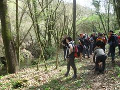 Pitigliano e le vie cave aprile 2012 (Katnis2016) Tags: pitigliano sorano sovana toscana grosseto italia vie cave etruschi maremma