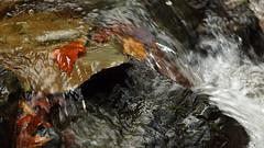 sudüşen şelalesi