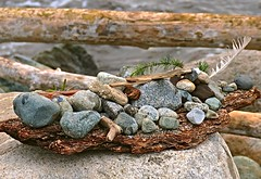 The Beautiful Rock Display . (ikan1711) Tags: table tablesetting displays beach decorations beachdecoration stones pebbles sticks feather bark rocks outdoors outdoorscenes wonderfulnature log beachscene twig