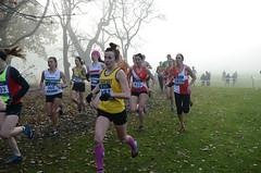 DSC_3422 (Dave Pinnington Photography) Tags: european womens xc trials sefton park liverpool 261116 photos by dave pinnington
