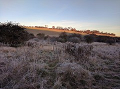 Promise (Rob Hall -) Tags: winter sunlight frost frosty ice icy cold sunrise shine warmth sunshine hill morning dawn nexus6