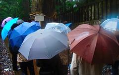 umbrella (Cassio Piccolo) Tags: japao2010 nikko guardachuva umbrella japan japao rain chuva people street rua cores colors