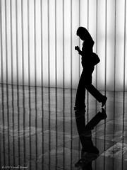 Texting in Silhouette (CVerwaal) Tags: nyc newyorkcity girls newyork pen silhouettes olympus wintergarden batteryparkcity cellphones lumix20mmf17 olympusep2