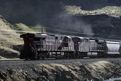 CP pushers on loaded Canpotex train east of The Dalles OR (grahamline) Tags: railroad oregon nikon trains unionpacific nikkor biggs d300 2485mmf284d