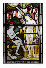 The 6th day (Roger Walton) Tags: uk england yorkshire creation artists adamandeve stainedglasswindows thixendale biblicalfigures claytonbell scripturalreferences stmarysthixendale