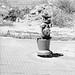 spain Hydrant