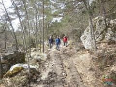 Covaleda - Pico Usera  (4) (Historia de Covaleda) Tags: espaa spain fiesta paisaje douro pinos soria historia pinar tradicion duero covaleda