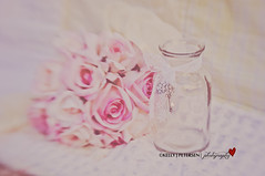 Pretty In Pink (Kelly J. Petersen (Photography)) Tags: pink flowers roses glass lensbaby bottle pastel