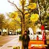 Big man,  big tree