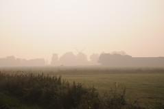 Windmhle Gisela im Nebel; Meggerdorf, Stapelholm (Chironius) Tags: stapelholm meggerdorf schleswigholstein deutschland germany allemagne alemania germania   ogie pomie szlezwigholsztyn niemcy pomienie nebel gegenlicht fog brouillard niebla silhouette