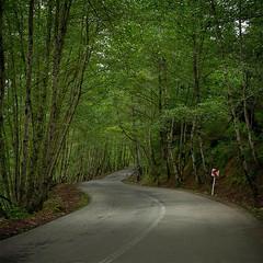 Masal (AmiR.Eslami) Tags: road green iran gilan   guilan  masal