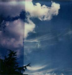 (La T / Tiziana Nanni) Tags: sky tree film nature colors clouds polaroid sx70 nuvole blu natura cielo analogue filmscan impossible analogic polaroidsx70 pellicola analogico scannedfilm istantanea tizianananni px70colorshade
