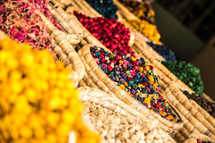 Color Festival (gopatpetit) Tags: color market morroco spices souk medina marrakesh march