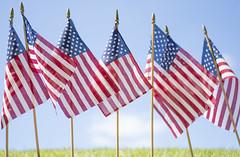 American Flags horizontal (clemsonnews) Tags: flag rip americanflag memorialstadium memorialday memorialpark americanlegion halfstaff honorguard 21gunsalute clemsonuniversity honorthefallen monumenttothefallen freedomisntfree clemsoncorps memorialday2015