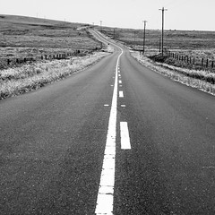 And What You Lost And What You Had And What You Lost (Thomas Hawk) Tags: america california marin pointreyes usa unitedstates unitedstatesofamerica westmarin westernmarin bw fav10 fav25 fav50