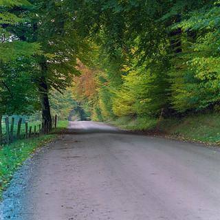 A greener tunnel