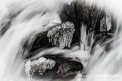DSC01965 (norwegen-fotografie.de) Tags: norw norwegen norway norge femunden femundsmarka villmark hedmark see wildnis wald landschaft
