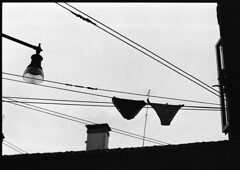 Sabato Mattina (Jordi Aragon) Tags: nikonf801 nikkor50mmf14d kodaktrix rodinal 150 5secagitationperminute filmrocks 20c 12minutes venezia cannaregio italia