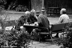 Chess (geba02) Tags: chess ajedrez parque del retiro madrid espaa spain ciudad city park europa europe outdoors outdoor byn blackandwhite blanco negro monocromatico monocromo black white men hombres juego game