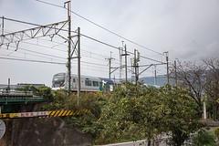 Azusa and Diospyros kaki (mensore) Tags:  azusa diospyroskaki   landscape train jr  railway
