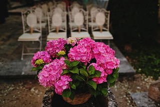 Flor de Sal – Flor de Sal 9