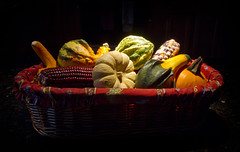 Harvest (brucetopher) Tags: thanksgiving harvest gourd ornamental corn pumkin decorative holiday seasonal season red colorful catchycolors fall winter lighting light display stilllife happyholidays tg thanks thankyou celebrate vegetable fresh