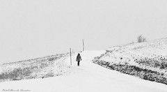 Even in our dreams it snows, but only once in life.   (Orhan Pamuk) Anche nei nostri sogni nevica, ma una sola volta nella vita.  (Orhan Pamuk) (alessandrafinocchiaro67) Tags: monochrome mountain mood snow snowy nikond750 flickrtravelaward nicefeelings