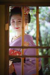 Maiko20161017_03_09 (kyoto flower) Tags: tanan fukuno kyoto maiko 20161017     gaap
