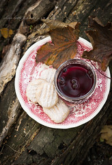 mulled wine with cinnamon cookies on tree trunk (beppelena) Tags: autumn season fall cookie nature wooden treetrunk foodstyling foodanddrink redcolor rustic mulledwine wine leaf drink