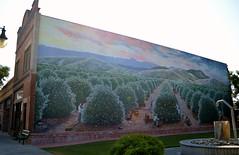 Orange picking mural (Williams5603) Tags: exeterca exeter california mural orange trees downtown streetart fruit picking sequoia