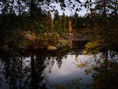 Korpilampi 4 (Raimond Z.) Tags: sgis fall autumn syksy trees lake lampi korpilampi tiik jrv sild finland soome suomi reflection peegeldus