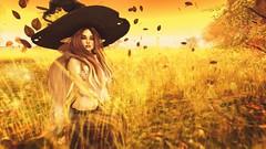 The Return of the Pumpkin Queen (GiaNikai) Tags: darkpassions catwa maitreya theskinnery mandala blues autumn leaves secondlife secondlifephotography secondlifeblogger secondlifeevents secondlifefashion sl gias world giasworld