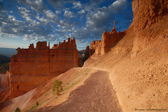 The Sentinel in Bryce Canyon (Ben_Cooper) Tags: bryce brycecanyon brycecanyonnationalpark utah nps nationalpark rock sandstone geology hoodoo hoodoos