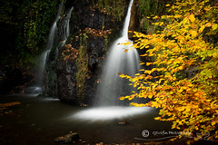 Autumn Waterfall (cjdolfin) Tags: alba fairyglen highland rosemarkie scotland scottish autumn cjdolfin colour landscape leaves nature trees water waterfall yellow