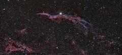 Veil Nebula (StefanBKK) Tags: ngc 6960 western veil nebula fli witches broom astrophotography astronomy fried cheese sandwich officina stellare rh 300 10 micron gm 3000 astro smurfs scotch whiskey