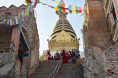 DSC_3412monkphoto (BasiaBM) Tags: swayambhunath monkey temple kathmandu nepal