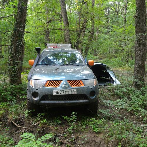 Лагерь в весьма шумном лесу