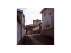 JP-27 (sm0r0ms) Tags: yashica mat124 film analog kodak fujifilm portra 6x6 kyoto teshima naoshima 2011 landscape architecture color photography roadtrip japan earthquake archive autaut setoinlandsea mediumformat romainsaccoccio