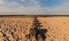 Wangerooge (Re Ca) Tags: nordsee buhne norddeutschland niedersachen strand möwen eos70d wangerooge nordseeinsel